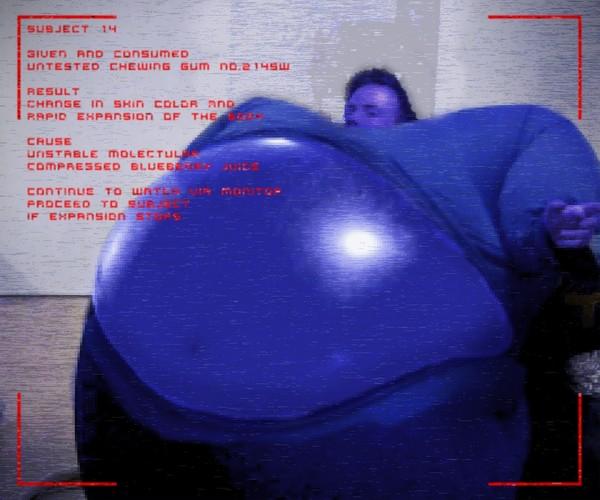 Blueberry tester
